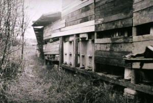 Včelín př. Dlouhého (kritizovaný)