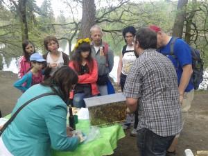 Včelaři-na Ringhofově cestě (1)
